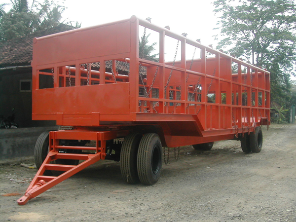 cane-trailer-9-mtr-with-rotary